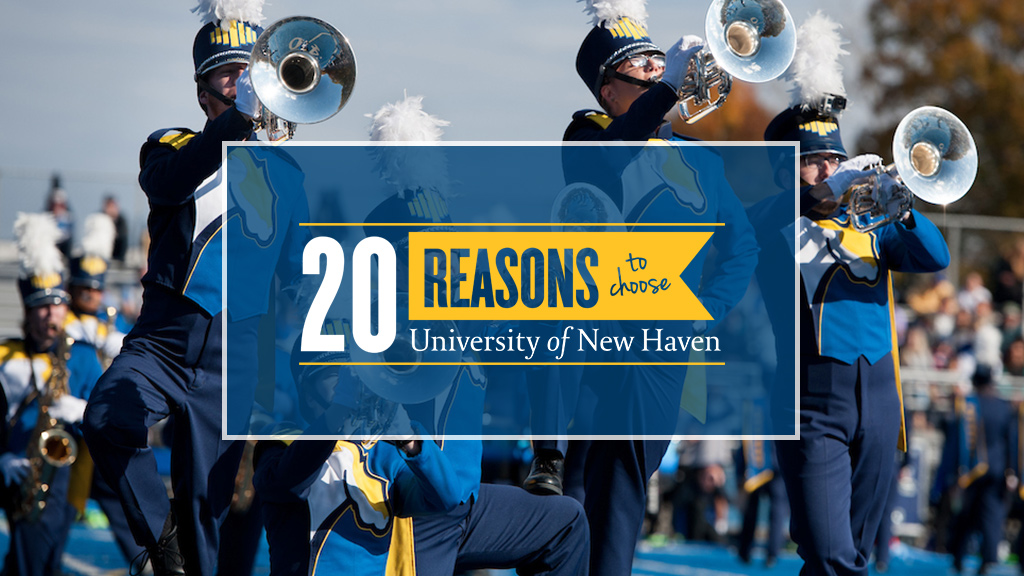 Choose the University of New Haven